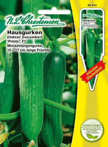 40317 Hausgurke `Burpless Tasty Green´ F1  Freilandgurke Saatgut Gurke