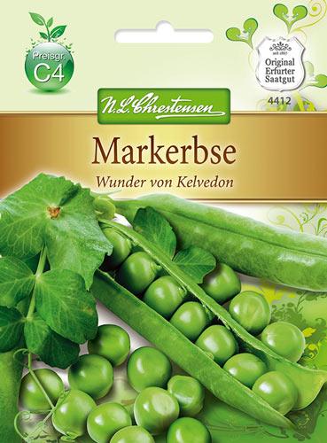 *Schwarze Buschbohne* 15 Samen *Buschbohnen Samen *Trockenbohne *Bean seeds